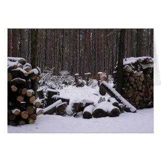 Cartão das madeiras do inverno