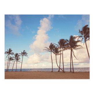Cartão das palmeiras da ilha de Kauai