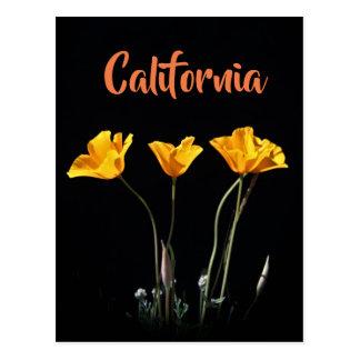 Cartão das papoilas de Califórnia