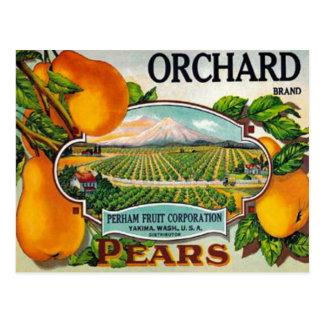 Cartão das peras do pomar do vintage