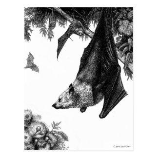 Cartão das raposas de vôo