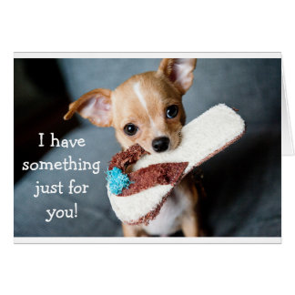 Cartão de aniversário adorável engraçado do cão da