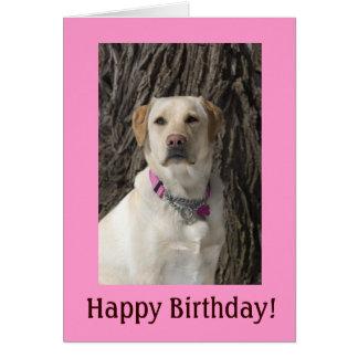 Cartão de aniversário amarelo cor-de-rosa do