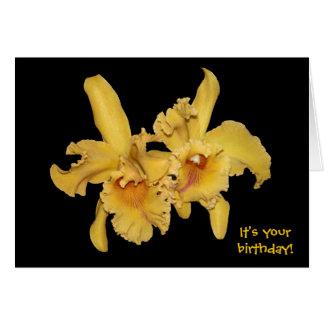 Cartão de aniversário amarelo da orquídea de