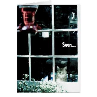 Cartão de aniversário assustador do gato