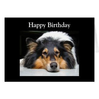 Cartão de aniversário bonito da foto do cão áspero