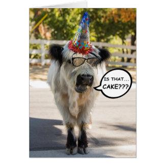 Cartão de aniversário bonito da vaca