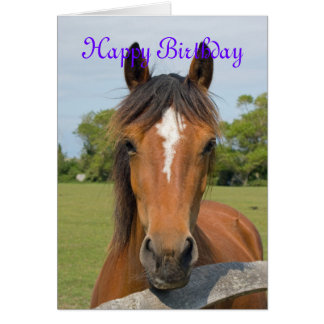 Cartão de aniversário bonito do custo da cabeça de