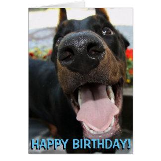 Cartão de aniversário bonito do doberman
