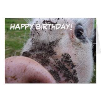 Cartão de aniversário bonito do porco