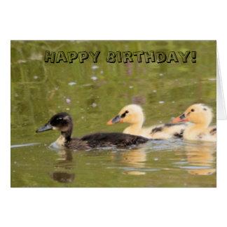 Cartão de aniversário bonito dos patos do brilho