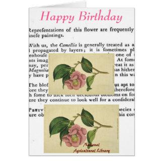 Cartão de aniversário botânico do impressão