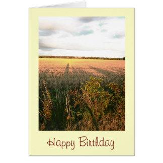 Cartão de aniversário cénico da foto do campo da p