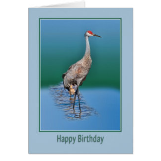 Cartão de aniversário com o guindaste de Sandhill