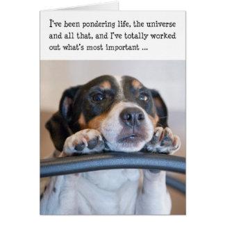 Cartão de aniversário cómico - cão que Pondering a