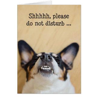 Cartão de aniversário cómico - cão que veste