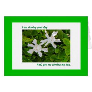 Cartão de aniversário compartilhado, Gardenias