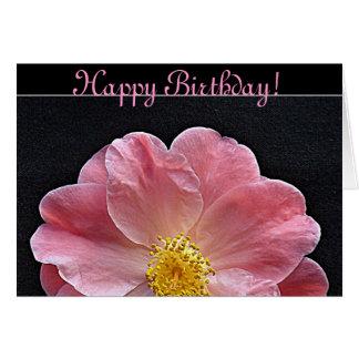 Cartão de aniversário cor-de-rosa da flor da