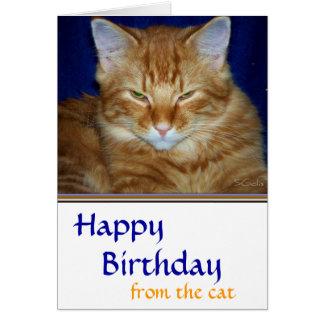 Cartão de aniversário Crabby do gato de gato