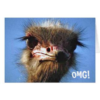 Cartão de aniversário da avestruz