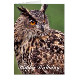 Cartão de aniversário da coruja de Eagle