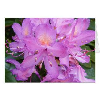 Cartão de aniversário da flor do rododendro