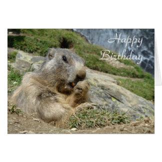 Cartão de aniversário da marmota