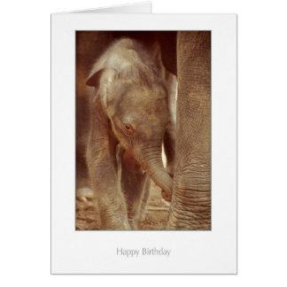 Cartão de aniversário da vitela do elefante