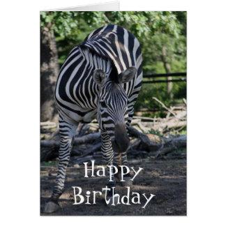 cartão de aniversário da zebra