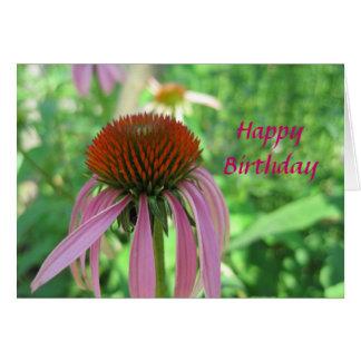 Cartão de aniversário de Coneflower