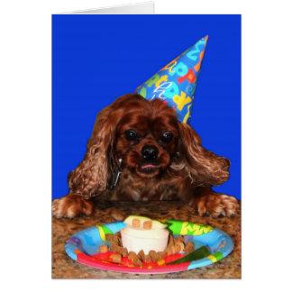 Cartão de aniversário descuidado do rubi