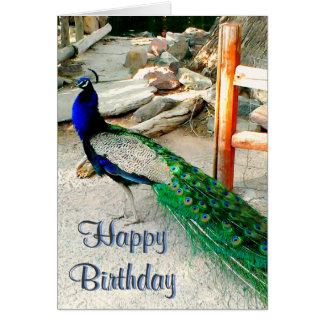 Cartão de aniversário - design do pavão, envelope