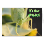 """Cartão de aniversário--""""Desinsete-o"""" cartão de ani"""