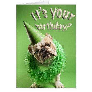 cartão de aniversário do buldogue