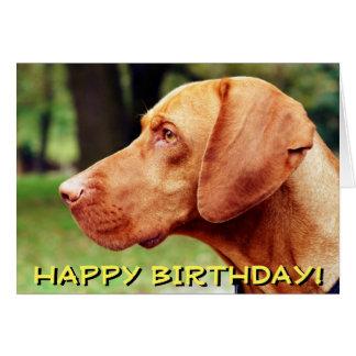 Cartão de aniversário do cão de Vizsla