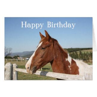 Cartão de aniversário do cavalo