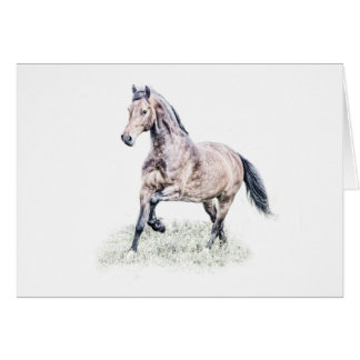 Cartão de aniversário do cavalo de Galês D