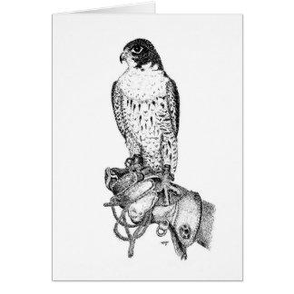 Cartão de aniversário do falcão de peregrino