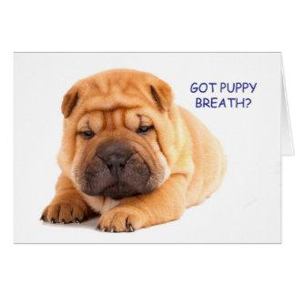 Cartão de aniversário do filhote de cachorro de