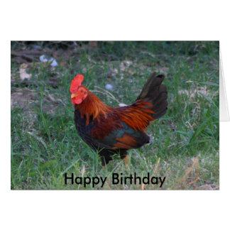 Cartão de aniversário do galo