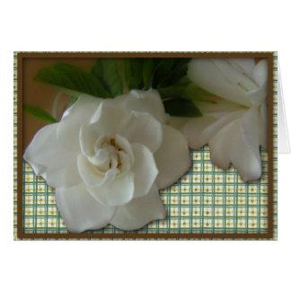 Cartão de aniversário do Gardenia