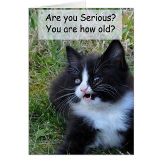 Cartão de aniversário do gatinho - engraçado!!!