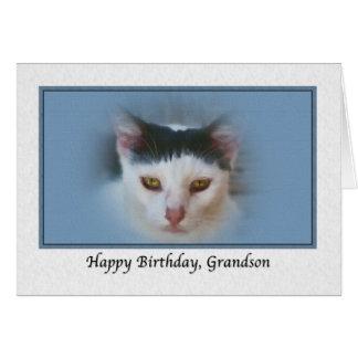 Cartão de aniversário do neto com gato