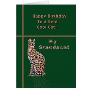 Cartão de aniversário do neto com Ocelot