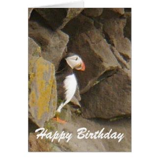 Cartão de aniversário do papagaio-do-mar