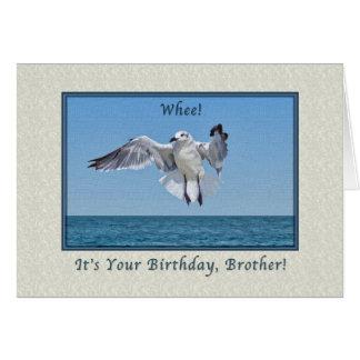 Cartão de aniversário do pássaro da gaivota de
