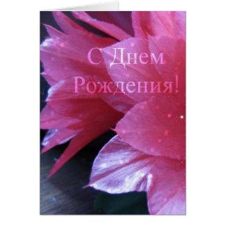 Cartão de aniversário do russo, Schlumbergera