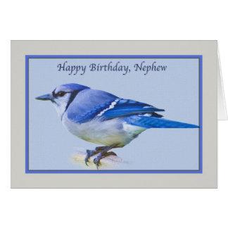 Cartão de aniversário do sobrinho com o pássaro de
