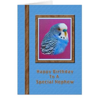 Cartão de aniversário do sobrinho com Parakeet azu