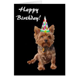 Cartão de aniversário do yorkshire terrier do